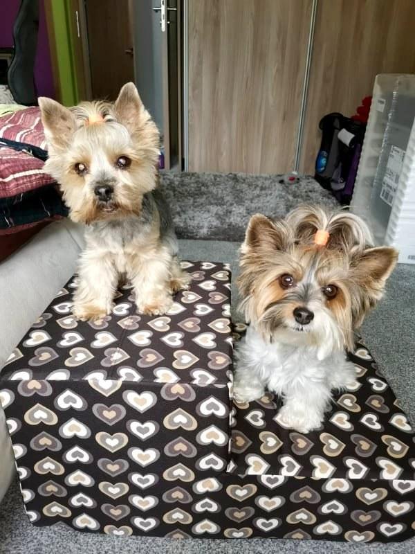Jessie a Ellie z Karlových Varů