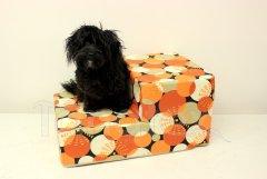 Schody pro psa Oranžové koule