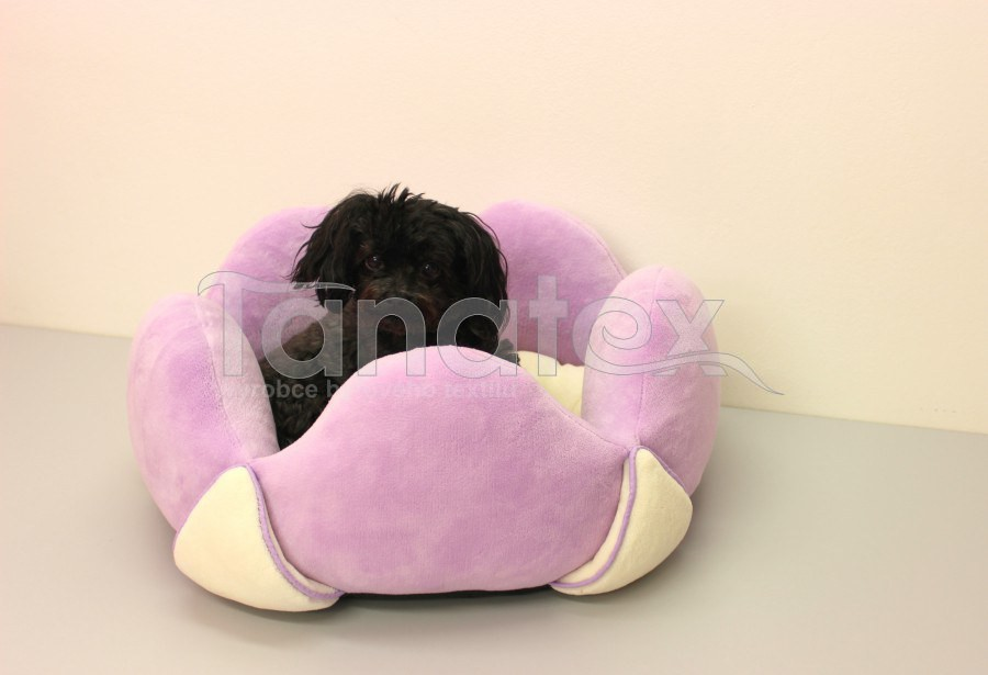 Lotos velký fialový - Lotos velký cca 60cm