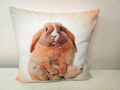 Fotopolštář sedící králík