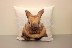 Fotopolštář králík béžový Fotopolštář zvíře