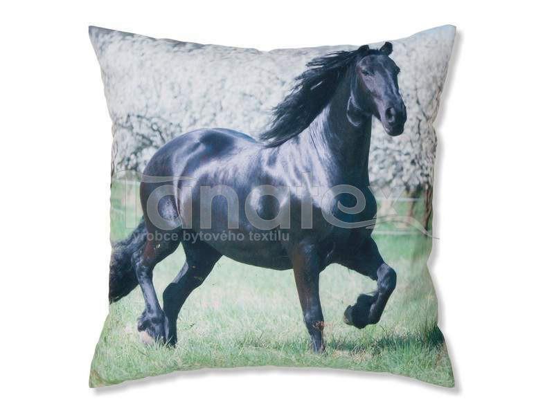 Fotopolštář Fríský černý kůň - Fotopolštář zvíře