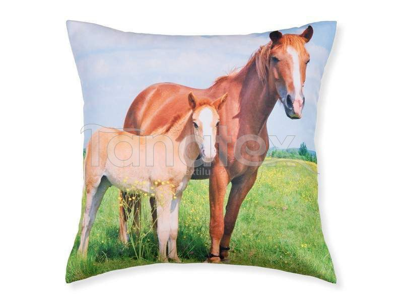 Fotopolštář kůň a mládě