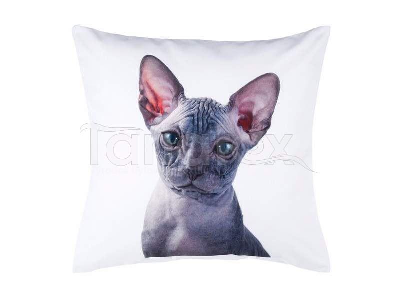 Fotopolštář kočka naháč - Fotopolštář zvíře