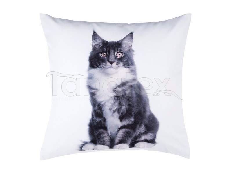 Fotopolštář šedočerná kočka - Fotopolštář zvíře