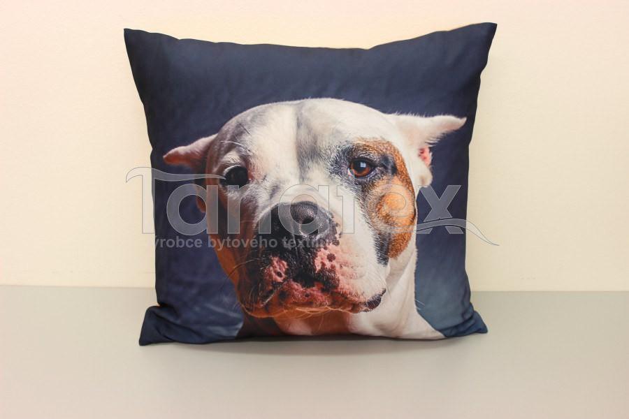 Fotopolštář Argentinská doga - Fotopolštář zvíře