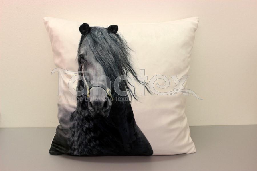 Fotopolštář černý kůň s dlouhou hřívou - hlava