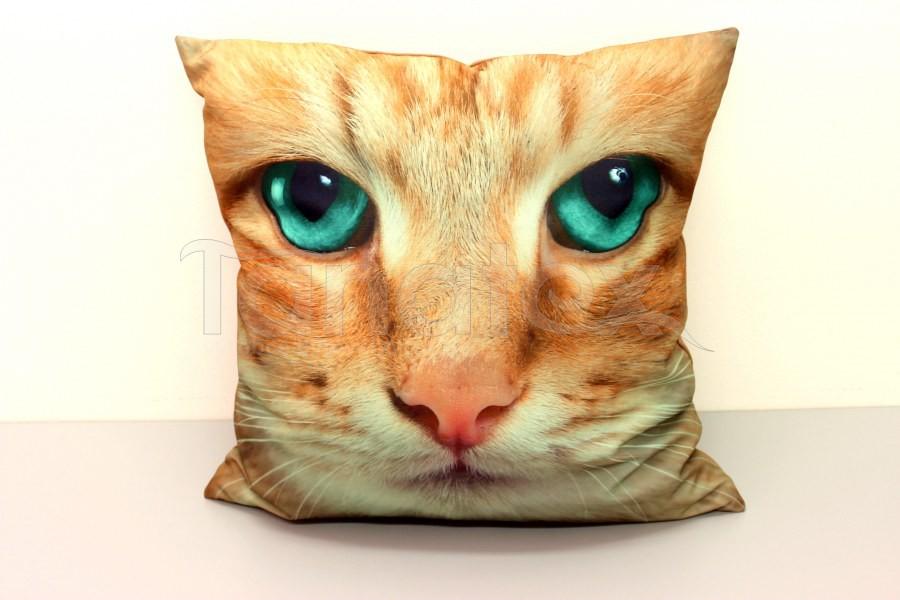 Fotopolštář kočka se zelenýma očima - Fotopolštář zvíře