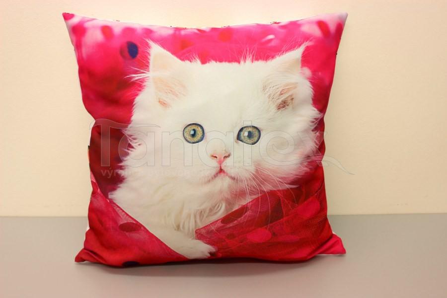 Fotopolštář bílé koťátko v růžové - Fotopolštář zvíře