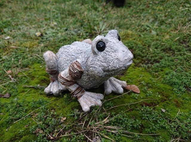 Žába dřevěný design menší