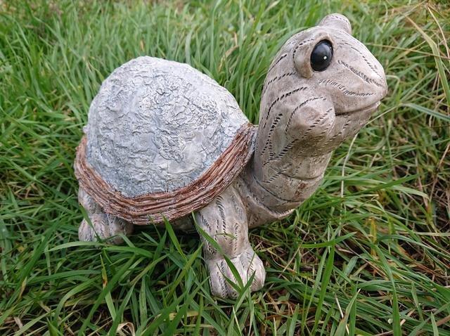 Želva dřevěný design větší