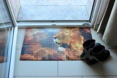 Rohožka Lev koberečky